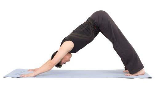下犬式对瑜伽垫防滑性的考验